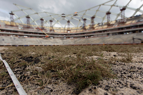 Figure 3 shows newly-planted grass in the Arena da Amazonas Stadium, 2014 (6)